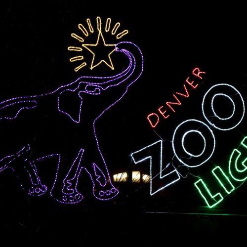 Denver-Zoo-lights-1500px